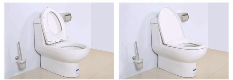 厕所 家居 马桶 设计 卫生间 卫生间装修 卫浴 装修 座便器 750_258