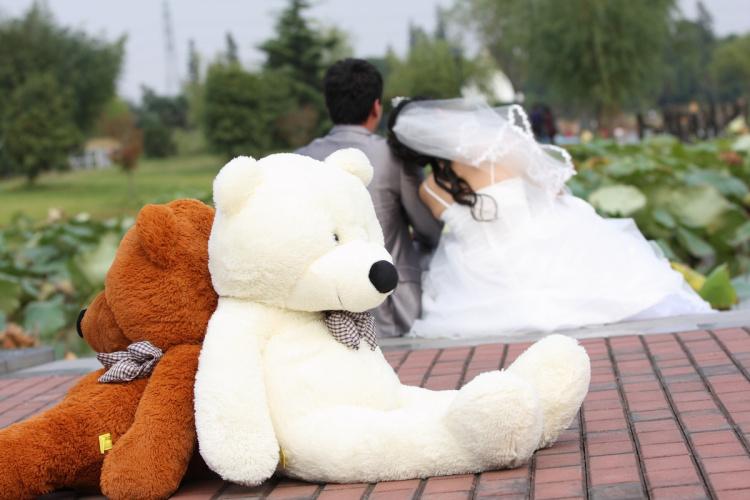 大眼猫 泰迪熊可爱瞌睡熊猫布娃娃公仔大号情人节毛绒